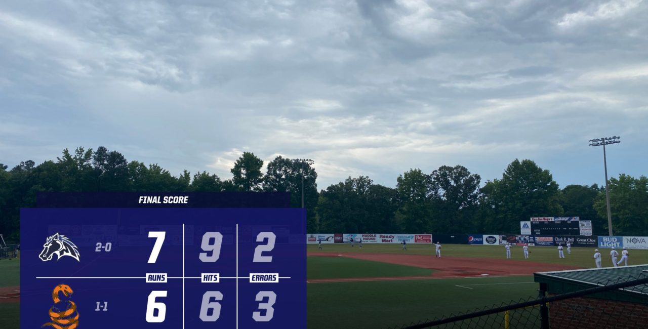 Holt, Mustangs Survive Copperheads Late Surge In 7-6 Victory