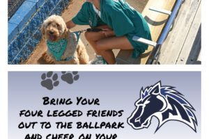 July 15 Gameday: Bark in the Park!